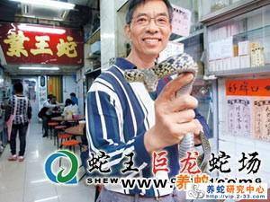 蛇怎么销售