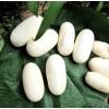 供应越南水律蛋