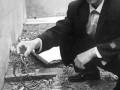 银环蛇蛇场蛇窝的设计和建造