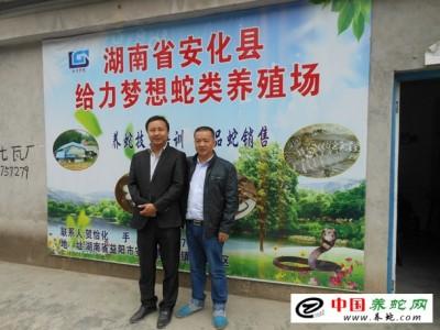 湖南大王蛇养殖基地