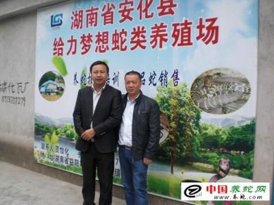 中国五步蛇养殖基地
