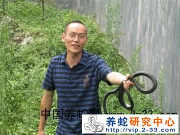 中国广西南宁养蛇人