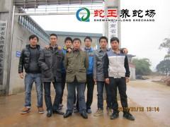 2015年第一期养蛇技术培训 (14)