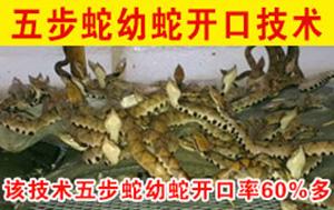 养蛇研究中心