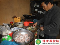 学员养蛇的蛇-老王蛇餐 (5)