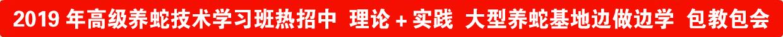 2015年養(yang)蛇(she)培(pei)訓(xun)班